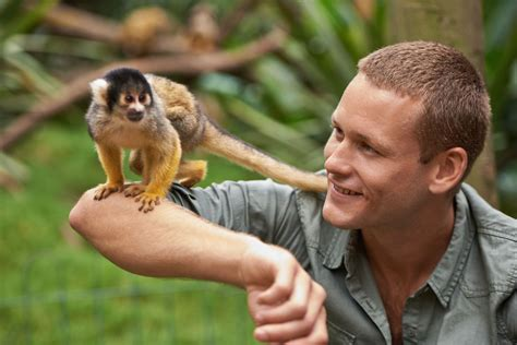 monkeys as pets issues with keeping a monkey as a pet