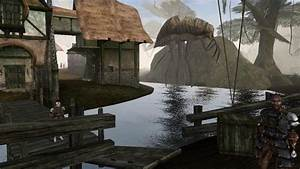 Don39t Expect A Remaster Of Elder Scrolls Morrowind In The
