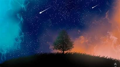 4k Stars Tree Shooting Resolution Wallpapers 1080p