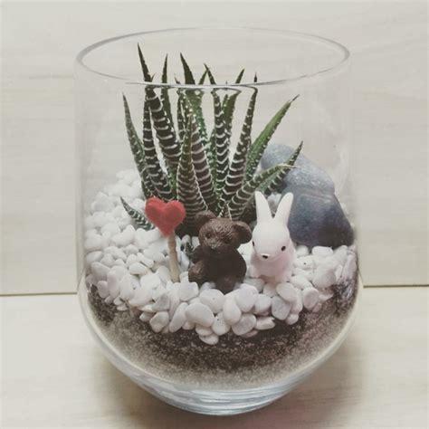 Im Glas Dekorieren by Sukkulenten Im Glas Im Blickfang Kreative Deko Ideen Mit