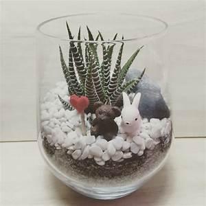 Bilder Im Glas : sukkulenten im glas im blickfang kreative deko ideen mit pflanzen ~ Orissabook.com Haus und Dekorationen