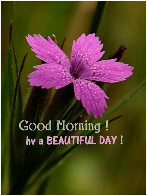 good morning sweetheart  hope    good night
