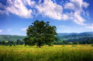 Landscape Tennessee Mountains