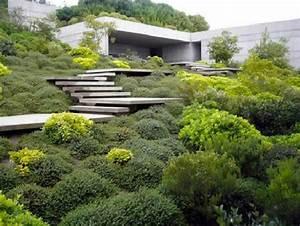 Außen Treppenstufen Beton : minimalistisches flachdachhaus garten berwuchert treppe ~ Michelbontemps.com Haus und Dekorationen