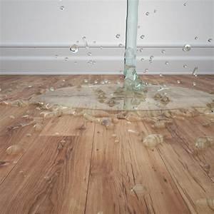 Wände Trocknen Nach Wasserschaden : estrichtrocknung nach wasserschaden so geht 39 s ~ Michelbontemps.com Haus und Dekorationen
