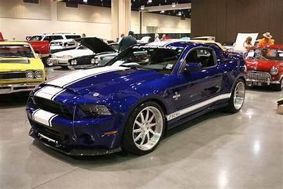 Gt500 Shelby Ford Snake Super Mustang Vicari