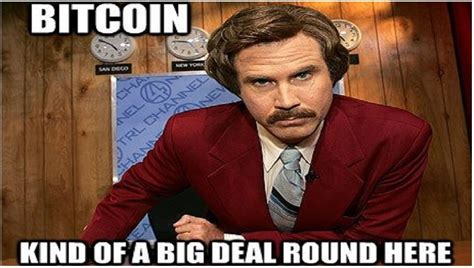 Bitcoin Memes - 22 internet memes that let you relive bitcoin s historic rise marketwatch