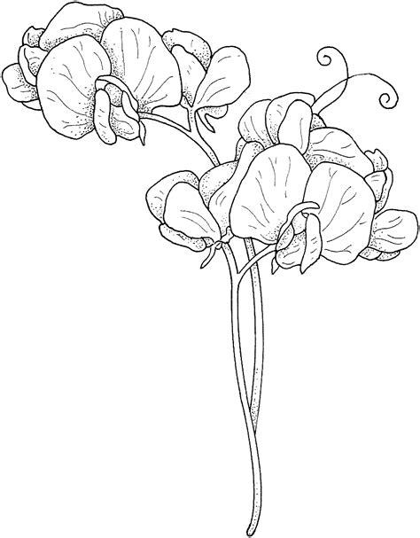 Kleurplaat Flower by Beautiful Printable Flowers Coloring Pages