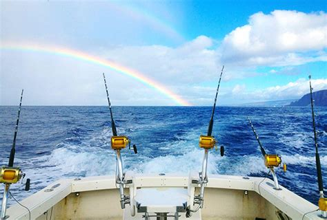 maui fishing report sportfishingmaui maui sport fishing start me up
