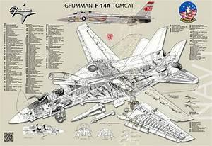 Grumman F  Fighter