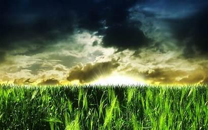 Nature Widescreen Wallpapers 3d Background Pixelstalk