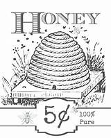 Honey Printable Label Bees Coloring Inspired Bringing Thought Start Perfect Jenniferrizzo sketch template