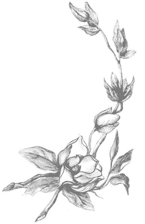 jeux gratuit cuisine coloriage fleurs et plantes magnolias à colorier