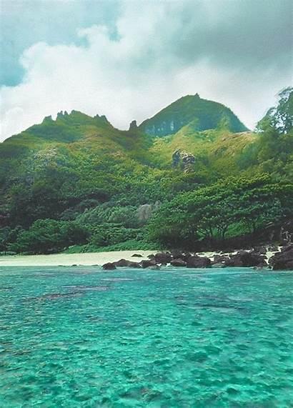 Landscape Tropical Beach Gifs Lotion Animated Ocean
