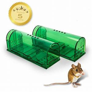 Humane Mouse Traps - Set Of 2