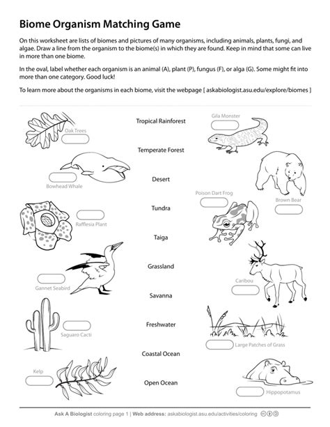 ask a biologist biome matching game