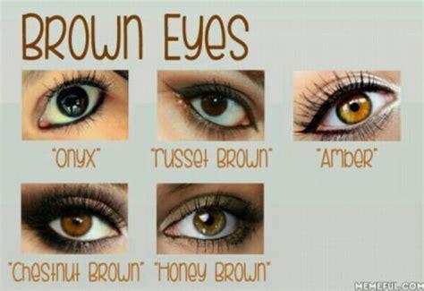 brown colored eyes   eye color  onyx
