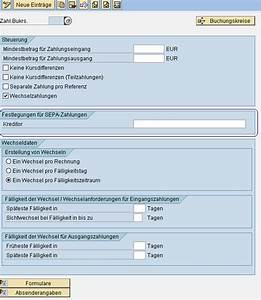 Sap Lieferschein Anzeigen Transaktion : sepa sap fi sepa zahlungsfluss zahllauf r transaktion hub ~ Themetempest.com Abrechnung