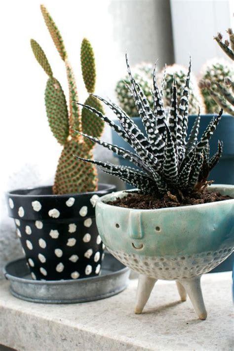decorez avec les plantes grasses dinterieur archzinefr