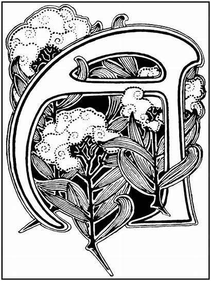 Nouveau Letter Illuminated Letters Alphabet Lettering Styles