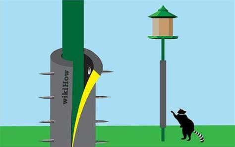 raccoons   bird feeder pole  steps