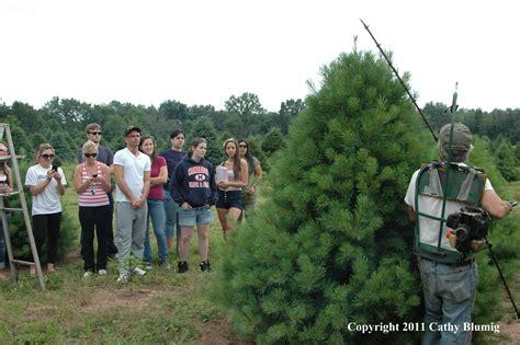 christmas tree farm somerset nj brookdale environmental science lab visits wolgast tree farm