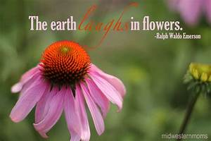 Quotes About Mothers And Flowers. QuotesGram