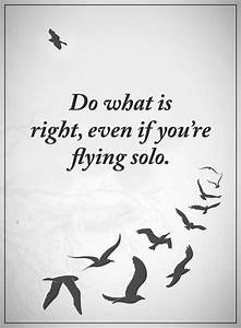 Best Inspiratio... Short Fly Quotes