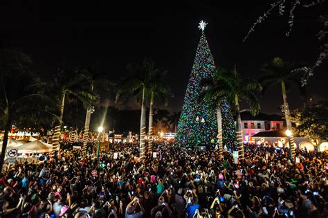 delray beach to light 100 ft christmas tree at old