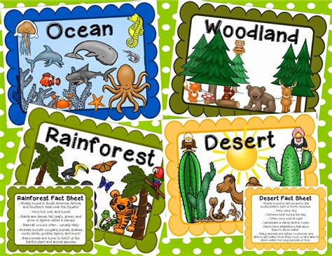This video was created to introduce the definition of a habitat to 1st and 2nd graders in an exciting, visual, and engaging way. Simply SWEET TEAching: Animal Classification and Habitats Unit