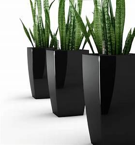 Pflanzen Für Innen : blumentopf gro au en ar69 hitoiro ~ Michelbontemps.com Haus und Dekorationen