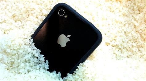 how do you leave your iphone in rice how to fix cell phones and tablets ubergizmo