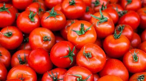 tomatoes  nutrition facts  health benefits