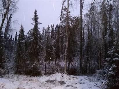 Falls Autumn Alaskan Journey Snow Into Winter