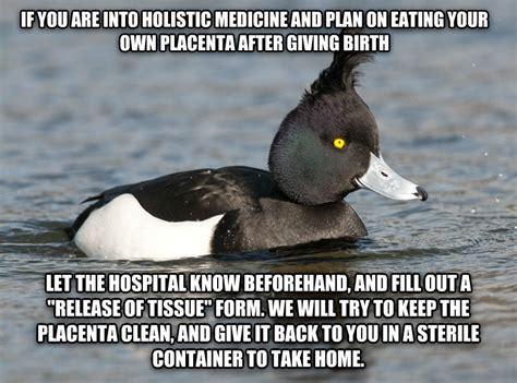 Meme Duck - new duck memes meet quot weird advice duck quot i work in a hospital rebrn com