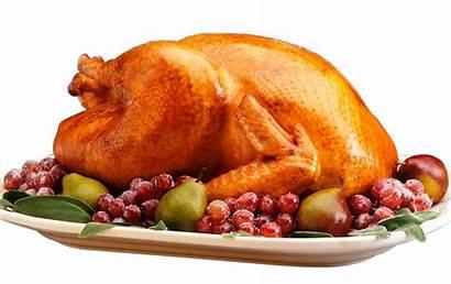 Turkey Thanksgiving Transparent Cartoon Background Platter Meat