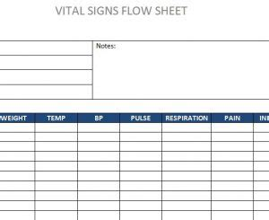 vital signs flow sheet template haven