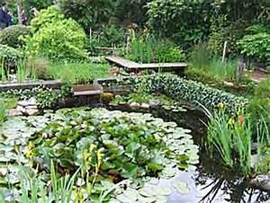 Plantes Vivaces Autour D Un Bassin : cr ation d un petit bassin avec b che arrosoirs et s cateurs ~ Melissatoandfro.com Idées de Décoration