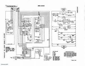 Camper Trailer Wiring Diagram  U2014 Raffaella Milanesi