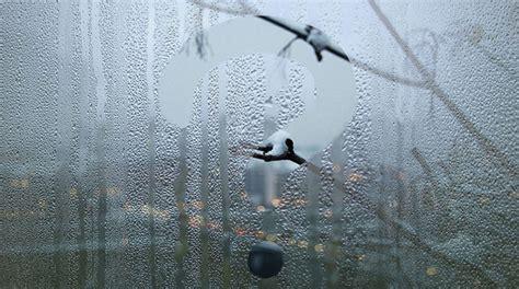 Почему пластиковые окна потеют изнутри что делать и как устранить причины конденсата