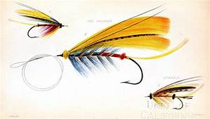 The Graffical Muse: 4 Pages of Vintage Fly Fishing Lures