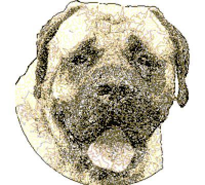 beagle pug american staffordshire terrier  machine