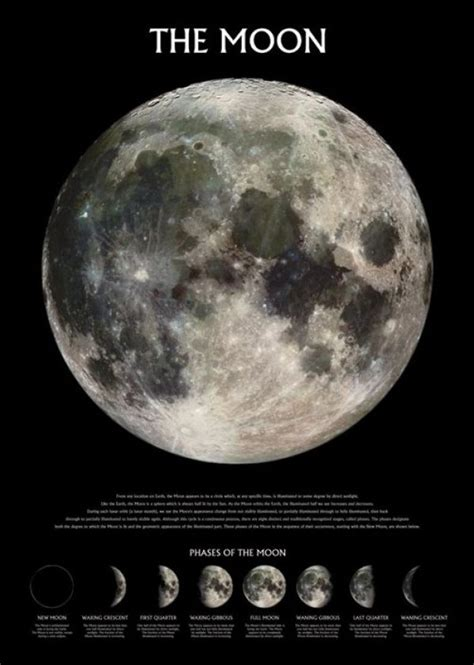 space posters earths moon poster pp panic posters