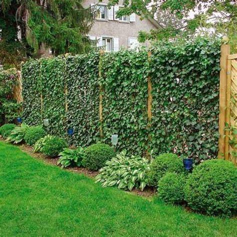 Jardines Verticales En Casa ¡son Tendencia!  El Parana Diario