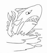 Coloring Whale Printable Momjunction Toddler sketch template