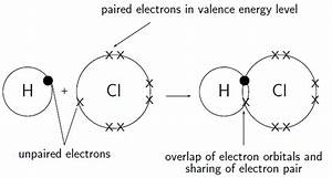 How Many Single Covalent Bonds Can Halogens Form