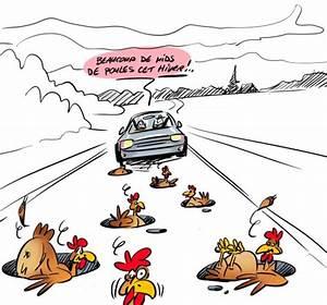 Nid De Poule Route : nid d 39 oiseau melting pot cr le 31 8 2010 ~ Medecine-chirurgie-esthetiques.com Avis de Voitures