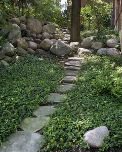 Pflanzen Für Den Schatten : die 25 besten ideen zu bodendecker schatten auf pinterest bodenbedeckende pflanzen hinterhof ~ Sanjose-hotels-ca.com Haus und Dekorationen