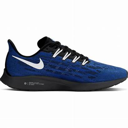 Shoes Special Nike Edition Kentucky Wildcats Them