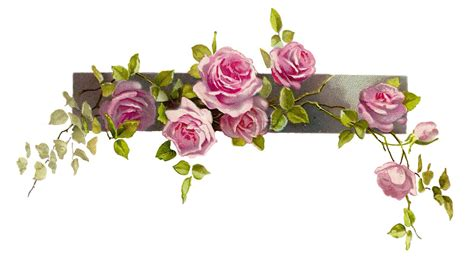 5 secrets how to use flower wallpaper borders to create a